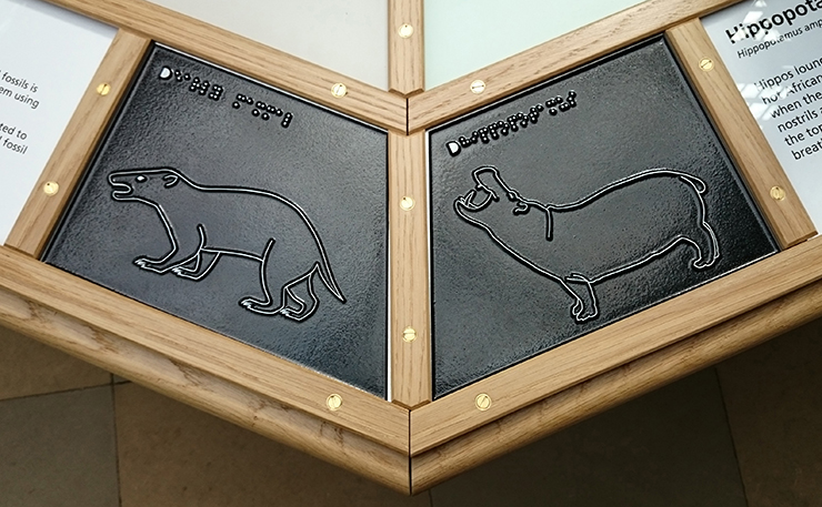 Metal tactile line drawings of an early Mammal and a Hippopotamus.