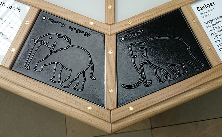 Metal tactile line drawings of an Elephant and a Mammoth.