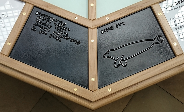 A metal tactile line drawing of a Grey Seal.