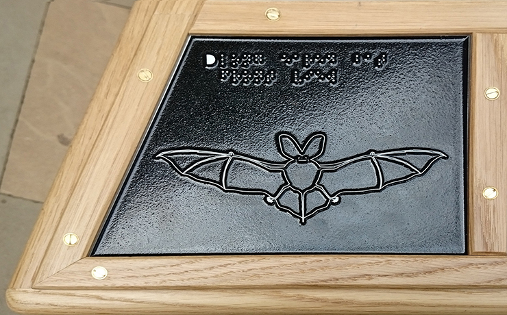 A metal tactile line drawing of a Long Eared Bat.
